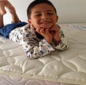 Bedguard mattress review